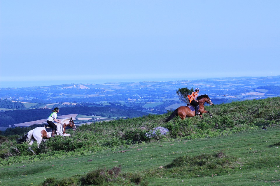 Horse-riding-in-Dartmoor.jpg